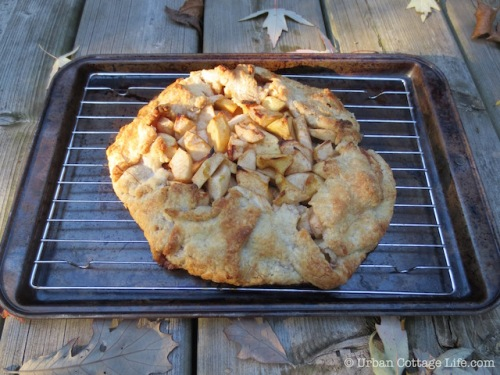 Apple Crostata with Maple Syrup, Vanilla & Ginger | © Urban Cottage Life.com