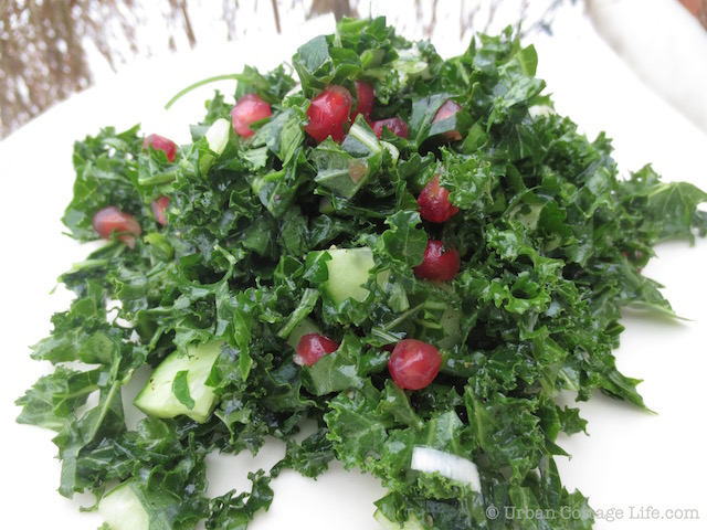 Parsley & Kale Salad with Pomegranate | © Urban Cottage Life.com